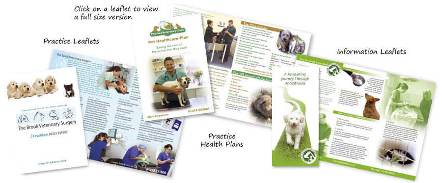 Veterinary Surgery Leaflets