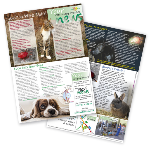 Flexi Vet News Autumn 2018