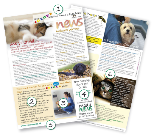 Ready Vet  News Winter 2011