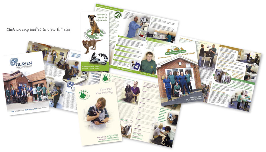 Samples of Flexi Veterinary Newsletter
